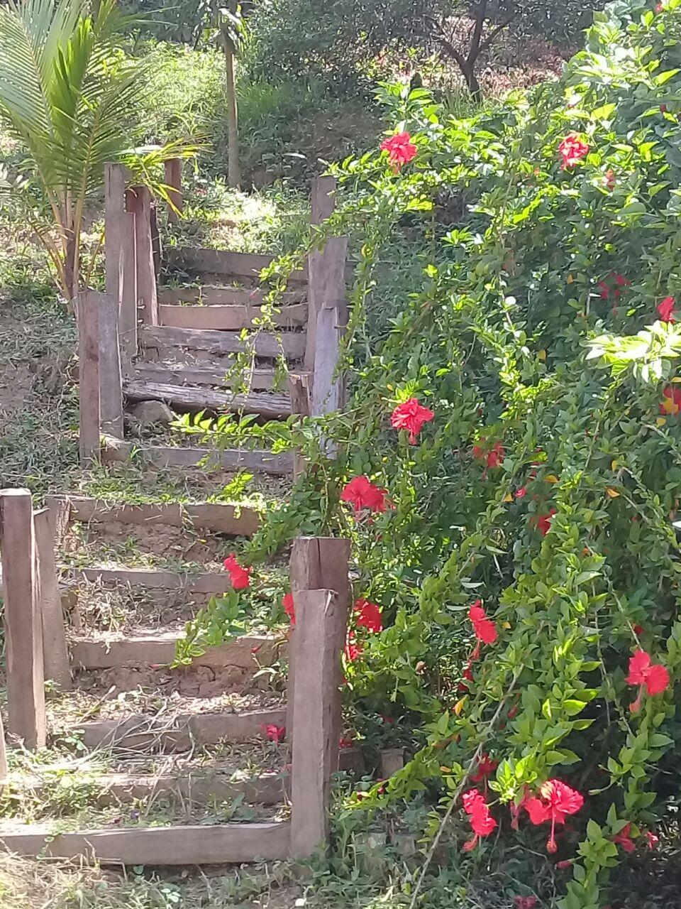 Vagamundos:  Caminar, deambular, descubrir