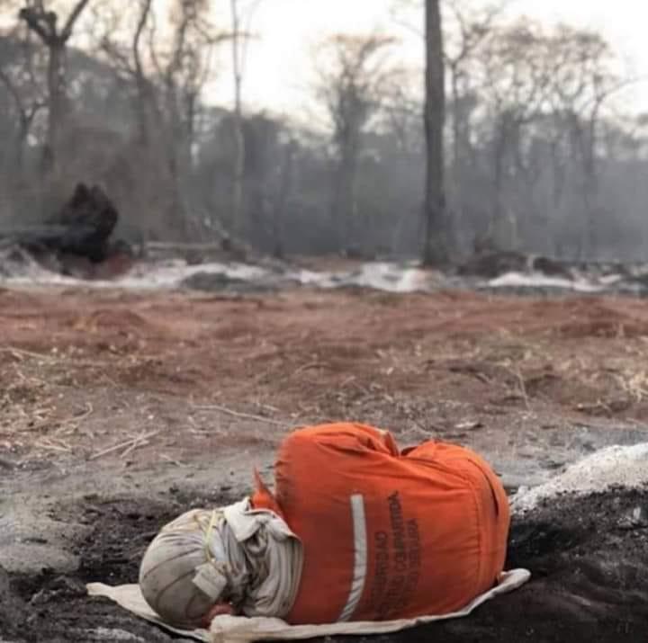 2019 El año del incendio de la Chiquitanía